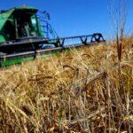18 mln de dolari. Japonia oferă un credit preferențial pentru modernizarea agriculturii din Moldova