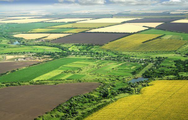 Peste 800 mii ha de teren erodate în Moldova. Cele mai afectate raioane