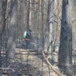 Incendiul de la Cernobîl: Ce s-a întâmplat după ce flăcările au izbucnit din nou