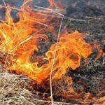 FOTO/ 75 focare de vegetație în ultimele 24 de ore: Au ars 480 de hectare de teren