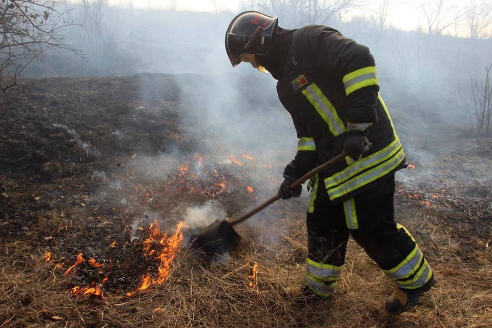 Ce amendă riscă persoanele care dau foc la frunze, miriște sau deșeuri menajere