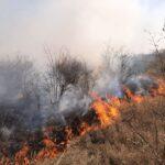 Incendiu de vegetație în Chișinău