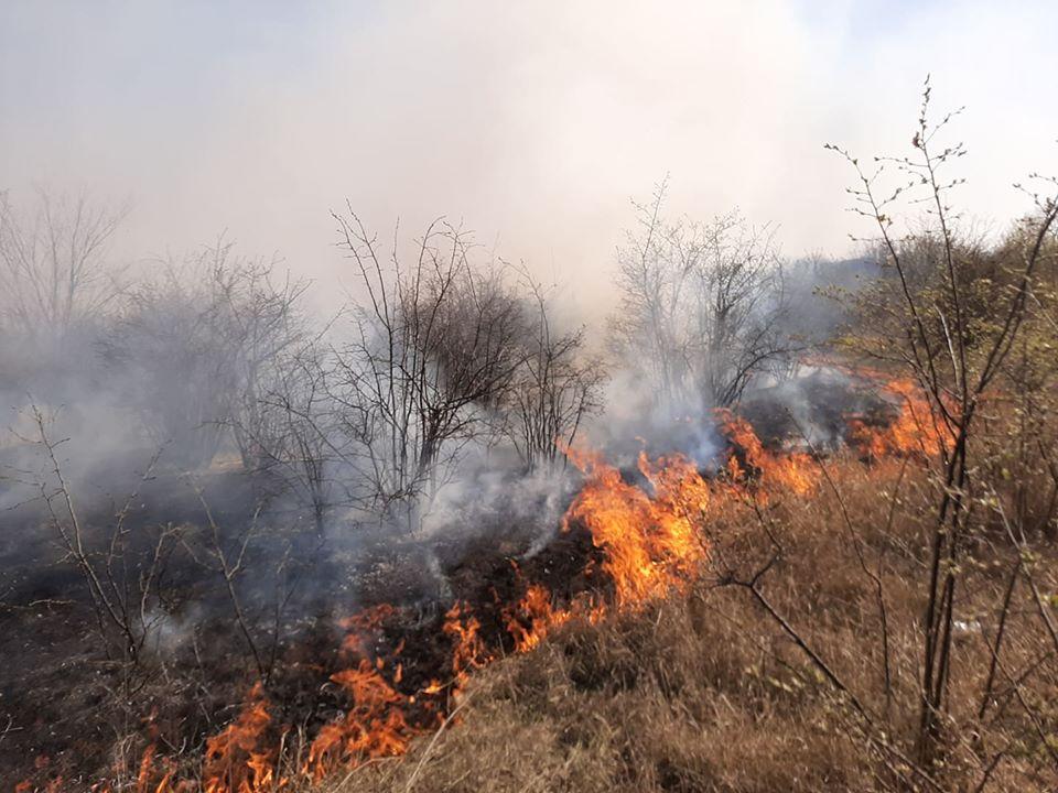 VIDEO/ Peste 70 de focare de vegetație uscată, lichidate de pompieri. Raioanele afectate