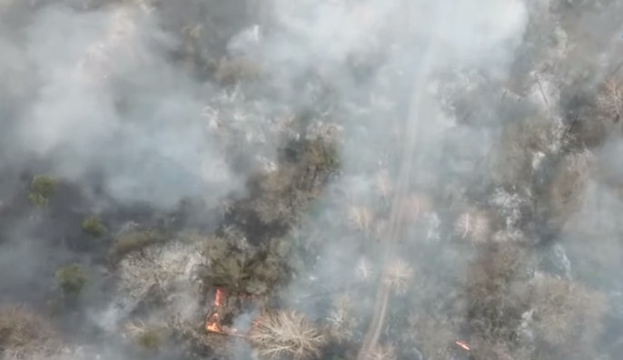 Creştere a nivelului de radioactivitate în Ucraina din cauza unui incendiu de pădure în apropiere de Cernobâl