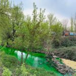 Agenția de Mediu a prelevat probe pentru a stabili dacă substanța de culoare verde devărsată în râul Bâc este toxică pentru mediu