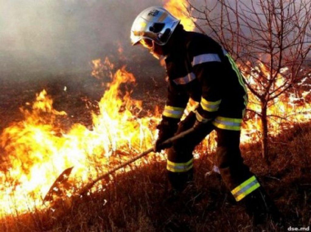 VIDEO/ Au ars peste 130 hectare de teren. Incendii de vegetație în mai multe raioane ale țării