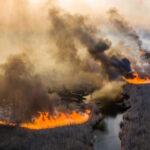 Incendiul de la Cernobîl. Cum a evoluat situația și dacă va afecta R. Moldova