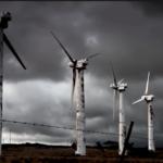 """VIDEO/ """"Planet of the Humans"""" – o privire critică asupra mişcării pentru mediu care a pierdut lupta în favoarea corporaţiilor"""
