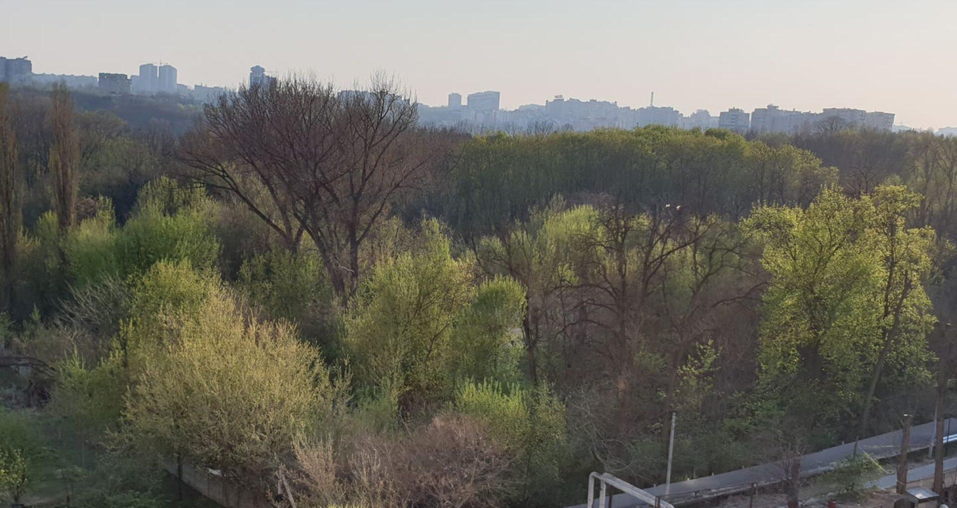 Precizările primarului Capitalei privind terenul din parcul Valea Trandafirilor de unde au fost tăiați ilegal 20 de copaci