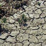 Codul GALBEN de secetă hidrologică, prelungit