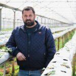 Un agricultor din Moldova va cultiva căpșuni pe substrat din nucă de cocos
