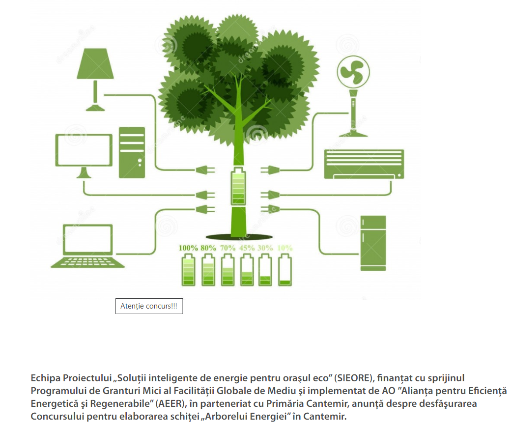 """Concurs inedit: """"Arborele Energiei"""" în Cantemir"""