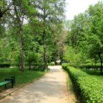 Orașele din sudul țării și din UTA Găgăuzia au cea mai mică suprafață a spațiilor verzi