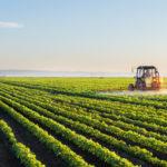 Achitarea neregulamentară a subvențiilor și alte nereguli, depistate de Curtea de Conturi la gestionarea Fondului național de dezvoltare a agriculturii și mediului rural