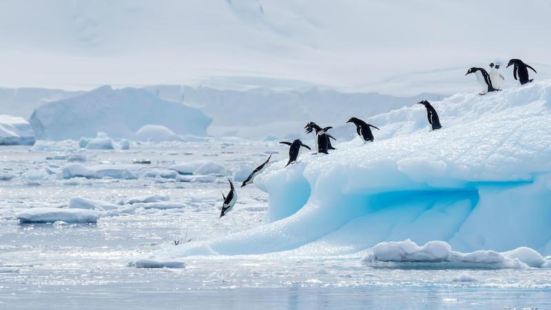 """Rusia: Recorduri de temperatură """"extraordinare"""" în Arctica"""