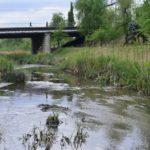 Pentru a preveni inundațiile, CSE Chișinău a constat necesitatea curățirii râului Bâc