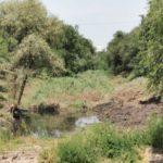 FOTO/ Lucrările de curățare a albiei râului Bâc, continuă