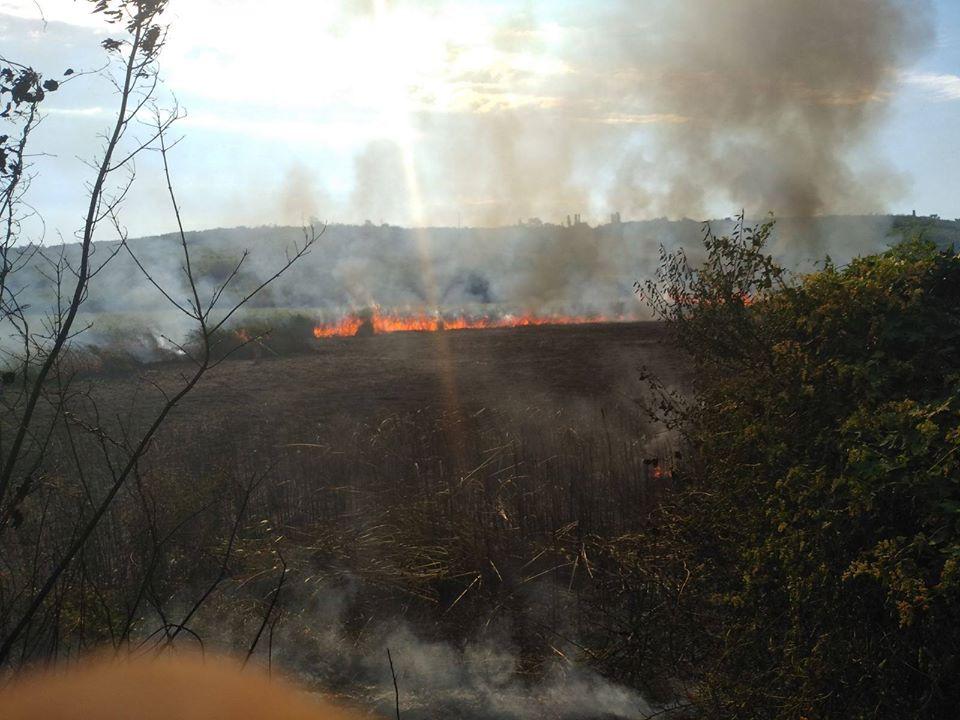 FOTO. VIDEO/ Incendiu la Ungheni. Au ars circa 70 ha de stuf și vegetație uscată