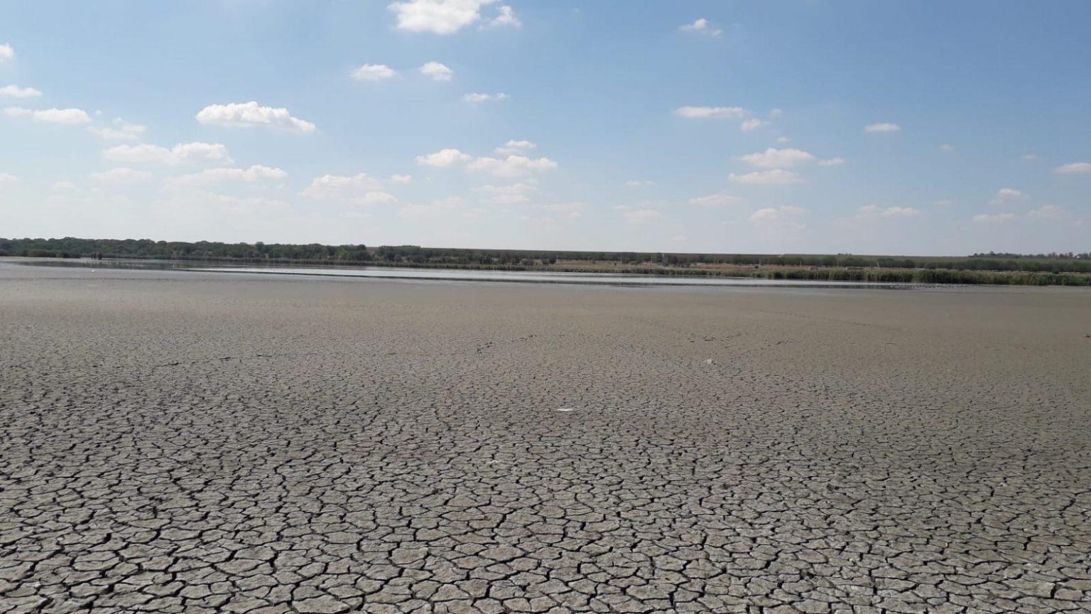 FOTO/ Lacul din satul Congaz a secat pe o suprafață de un kilometru