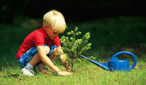 Tinerii pentru EcoPlastic organizează un studiu privind nevoile copiilor în educația de mediu