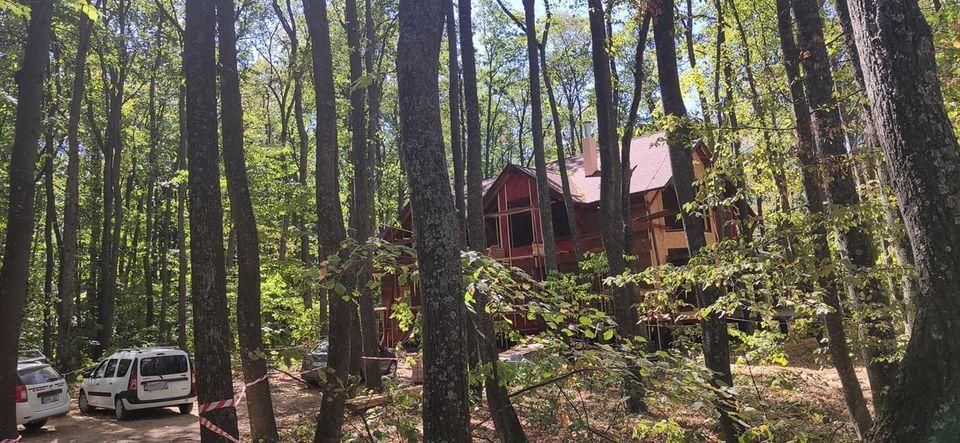 FOTO/ Șapte case construite ilegal în pădure, găsite în urma unei verificări inopinate. Ce au făcut responsabilii