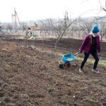 Informații despre toți producătorii ECO. A fost lansat Atlasul agriculturii ecologice din Republica Moldova