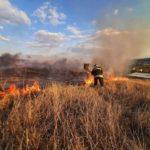 """VIDEO/ Incendiu de proporții în rezervația """"Orheiul Vechi"""""""