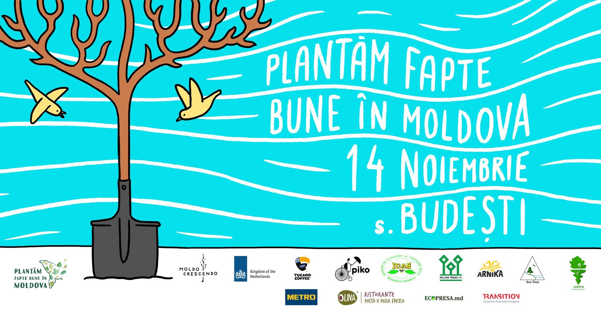 Plantăm fapte bune la Budești. Participă la sădirea a cinci mii de copaci