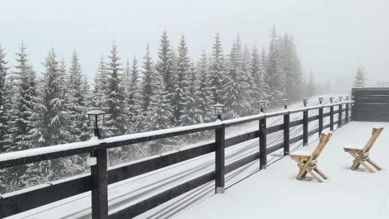 VIDEO/ Ninsoare ca în povești în România. Stratul de zăpadă a ajuns la 8 centimetri