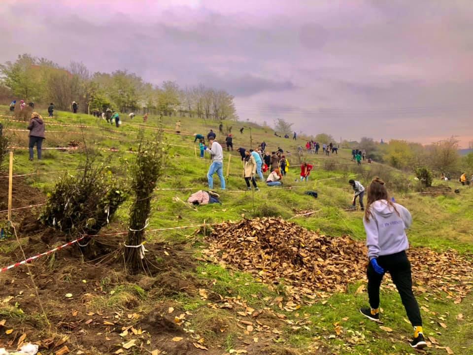 Video/ Toamna 2020 – plantăm fapte bune în Moldova