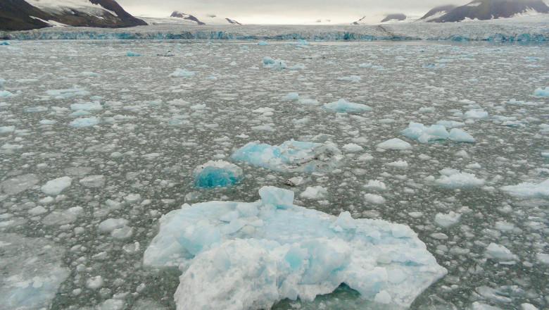 Regiunea Arctică arată de nerecunoscut – mai verde, mai caldă și mai lipsită de gheață