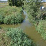Expediţii ecologice pe râul Botna