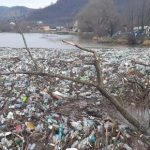 VIDEO/ Dunărea a fost invadată de gunoaie. Mii de pet-uri și resturi menajere în urma inundațiilor