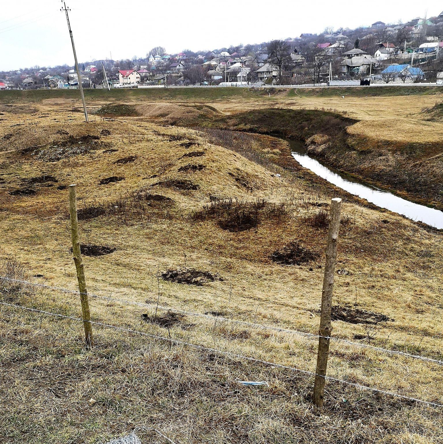 Plantarea pădurii riverane pe Ichel, în localitatea Coșernița. Foto: Hai Moldova