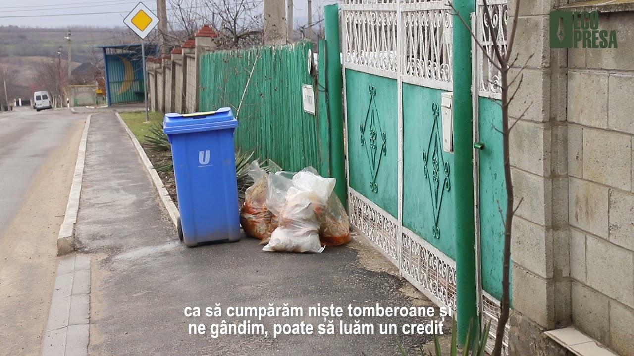 FOTO. VIDEO/ O misiune specială: curățenia în orașul soarelui