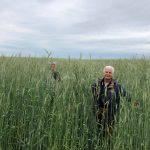 Consultanţă agricolă gratuită pentru producătorii ecologici moldoveni