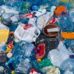 """Bine ați venit în """"plastisferă"""": ecosistemul sintetic care evoluează pe mare"""