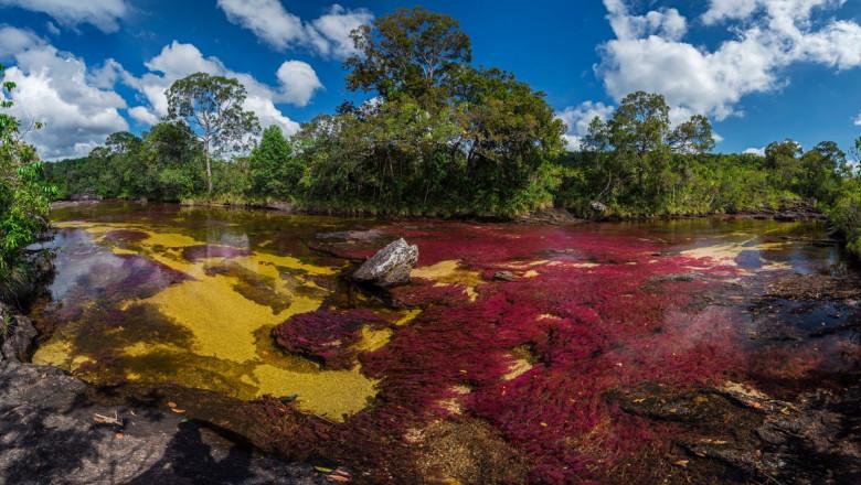 """FOTO: Imagini spectaculoase cu """"Râul celor 5 culori"""""""