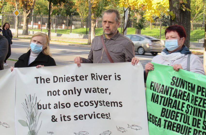 """FOTO/ """"Nistrul nu este doar apă, dar și ecosistemele cu serviciile lor"""". Mai mulți ecologiști au protestat în fața Parlamentului"""
