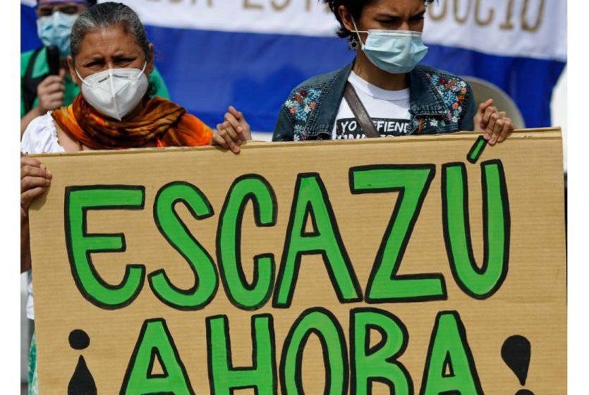 Cel puţin 227 de activiști de mediu au fost asasinaţi în 2020, în medie câte patru pe săptămână