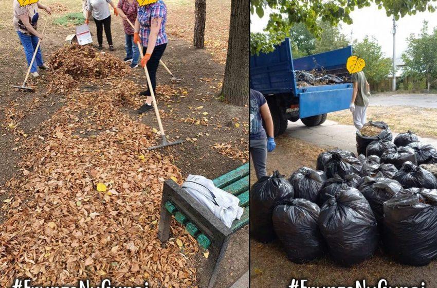 Resurse, nu gunoi. De ce nu trebuie să aruncăm frunzele