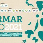 Sunt așteptați 100 de expozanți și antreprenori sociali. Detalii despre IarmarEco 2021, un iarmaroc pentru oameni, torbe și suflet