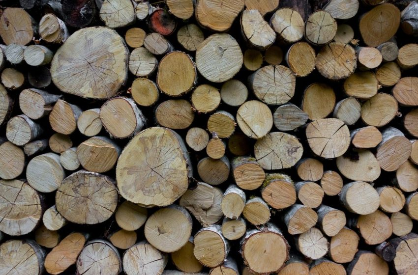 Moldsilva anunță că lemnul de foc se va vinde la prețurile de anul trecut