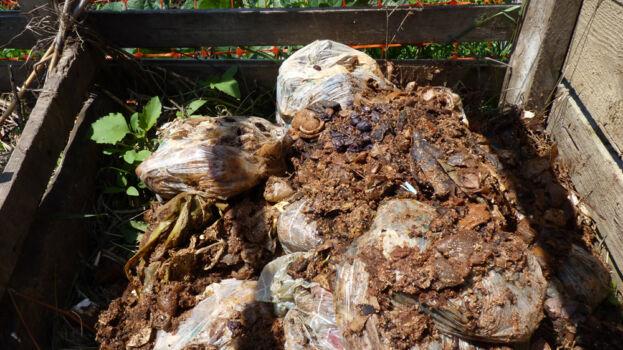 Un punct de compostare, aproape, plin cu resturi alimentare murate